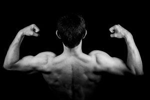 Krafttraining und Muskelaufbau. Zwei Wege führen zum Muskelaufbau. Weniger Gewicht mit mehr Wiederholungen und mehr Gewicht mit weniger Wiederholungen trainieren unterschiedliche Muskelfaserarten.