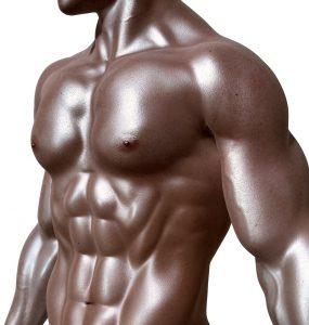 Muskelaufbau gelingt am besten durch die richtige Ernährung und das passende Trainingstrainingsprogramm.