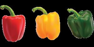 Die Ideal-Diät unterscheidet Lebensmittel in 3 Kategorien. Grüne, gelbe und rote. Wobei die grünen zunächst 4 Wochen lang ausschließlich gegessen werden.
