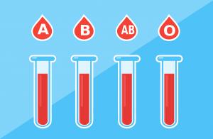 Bei der Metabolic Balance Diät steht der Bluttest im Mittelpunkt des Abnehmplans.