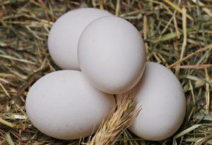 Eier enthalten viele lebenswichtige Stoffe und Eiweiße.