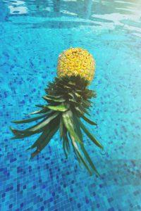 In frischer Ananas sind hauptsächlich Kohlenhydrate enthalten.