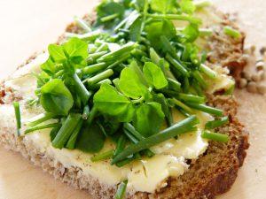 Durch Salate und Vollkornprodukte kann man viele für die Verdauung wichtigen Ballaststoffe aufnehmen.