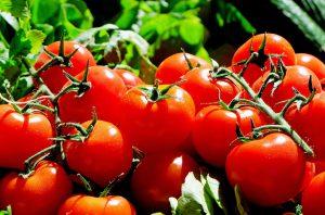 Abnehmen mit Naturprodukten, gerade frisches Gemüse schmeckt besser und ist gesünder.