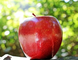 Ein Apfel ist nicht nur schmackhaft, er hält auch gesund.