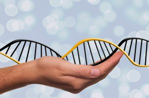 Die DNA-Diät verspricht Abnehmerfolge durch individuelle DNA-Analyse.