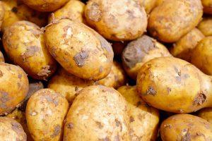 Kohlenhydrate in Form von Kartoffeln machen nicht automatisch dick. Auf den Grundumsatz kommt es an.