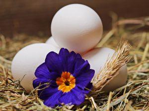 Die Eier-Diät wird auch als falsche Mayo-Diät bezeichnet.