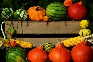 Durch die Farbendiät kann man die Ernährung dauerhaft umstellen und abnehmen.