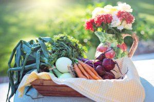 Nicht empfehlenswerte Diäten, sind Diäten die nicht auf eine Ernährungsumstellung und Sport setzen.