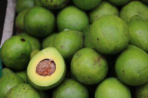 Wie Avocados beim Abnehmen helfen