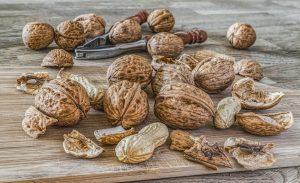 Nüsse können die Gehirnleistung steigern.