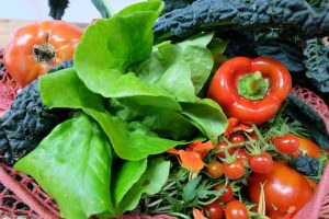 Wie die Ernährung die Funktion des Gehirns beeinflussen kann.