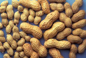 Proteine und Fette aus Nüssen sind vorteilhaft für eine gesunde Ernährung.