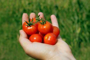 Eine handvoll Gemüse sollte man täglich zu sich nehmen.