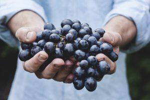 Hochwertige Lebensmittel erhöhen den Genuss.