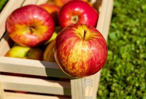 Äpfel sind kalorienarm und reich an Vitaminen und Mineralstoffen.