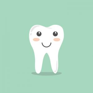 Nährstoffe wie Calcium sind wichtig für gesunde Zähne.