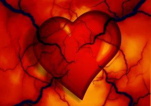 Ablagerungen können die Blutgefäße verengen und zu Herzinfarkten führen.