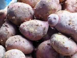 Süßkartoffeln sind gesund und können beim Abnehmen helfen.