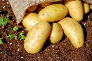 100 g Kartoffeln haben rund 70 kcal.