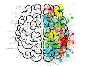 Cardio-Training fördert die Gehirnleistung