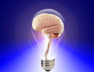 Abnehmen mit der Mind-Diät fördert die Gehirnleistung und das Herz-Kreislauf-System.