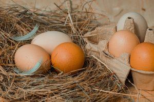Biotin kann gut mit Eiern aufgenommen werden, es wird für Haarwachstum, Nägel und Haut benötigt.