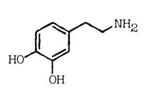 Dopamin ist ein Kunstwort aus DOPA und Amin, also kurz DA. Es handelt sich um ein biogenes Amin der Gruppe der Katecholamine und ist ein wichtiger, überwiegend erregend wirkender Neurotransmitter des zentralen Nervensystems.